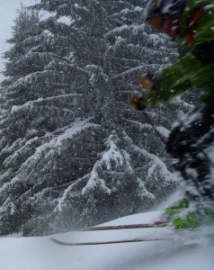 Powder Stormy Weather and Trees Great Skiing in St Gervais
