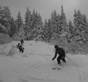 Open Tree Skiing At Les Houches